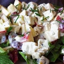 Waldorf Inspired Chicken Salad