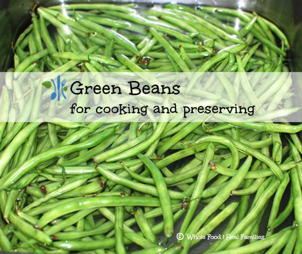Green Beans for cooking and preserving
