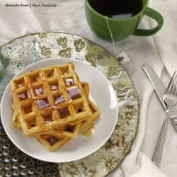 Healthy Whole Wheat Waffles