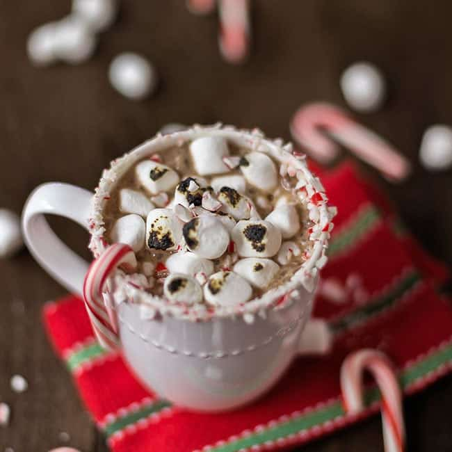 Decadent Peppermint Hot Chocolate with Toasted Marshmallows