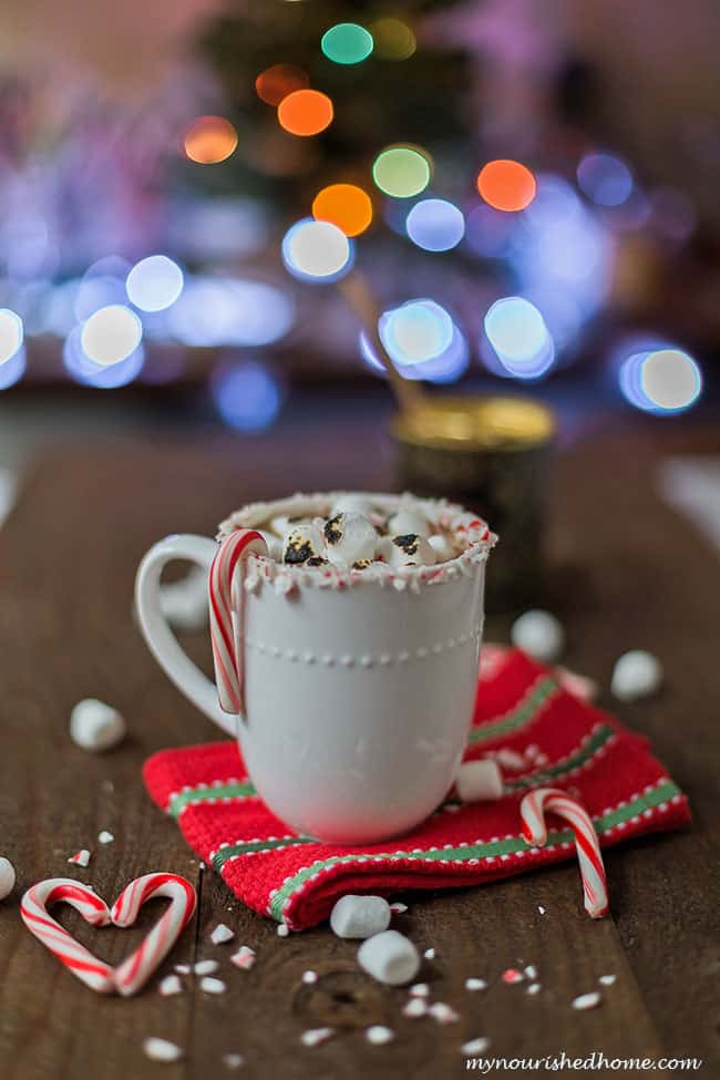 Peppermint Hot Chocolate with Toasted Marshmallows