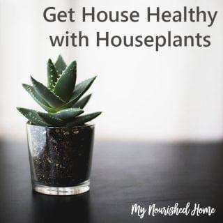 Get healthier with houseplants