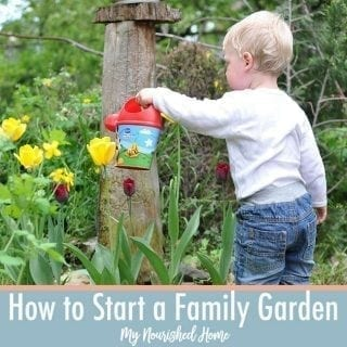 Begain a family garden with your kids