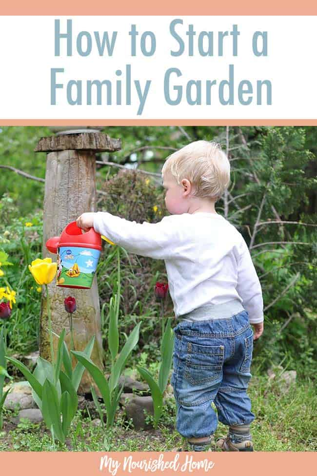 How to start a family garden