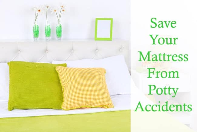 Clean your mattress after potty accidents