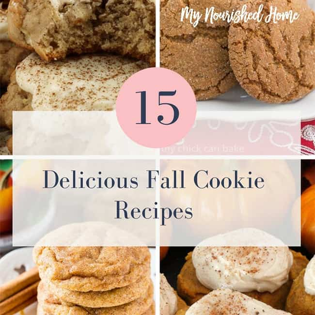 Here are delicious Fall Cookie recipes to get you from Halloween to Thanksgiving.