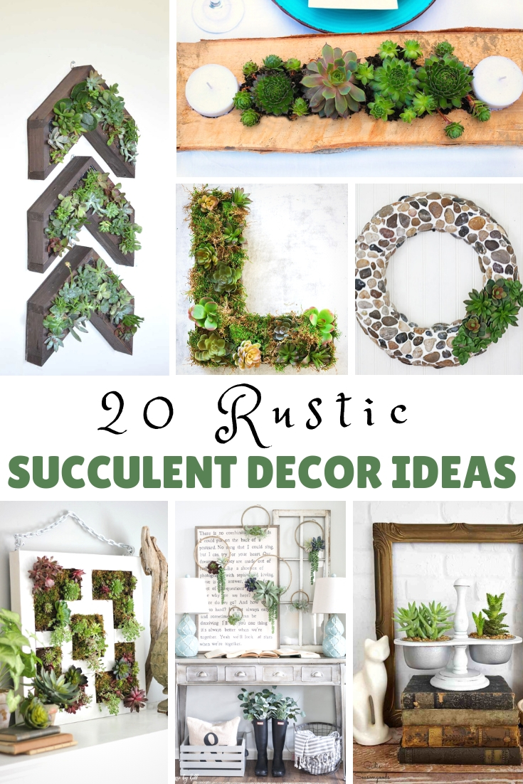 Rustic succulent decor ideas to add life and color to your home