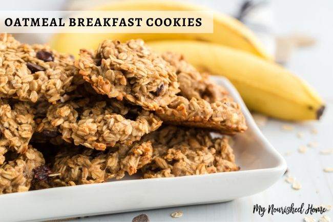 Healthy Oatmeal Cookies on the go