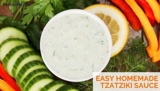 Quick and Easy Homemade Tzatziki Sauce Recipe