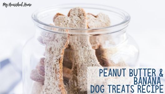 Yummy Peanut Butter and Banana Dog Treats Recipe - MYNOURISHEDHOME.COM