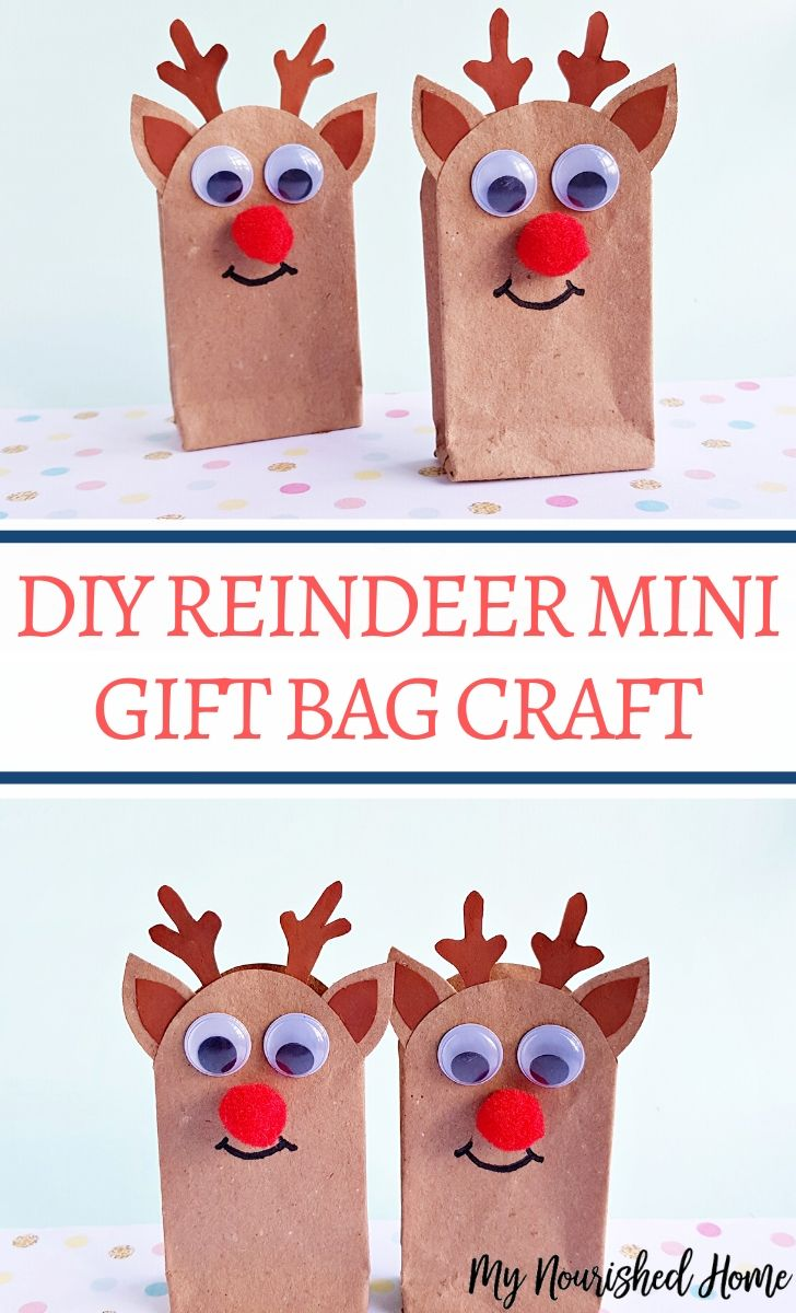Cute DIY Reindeer gift bag