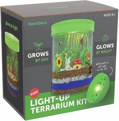 Light Up Terrarium Kit - plant science for kids